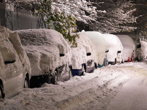 Cars covered in snow.